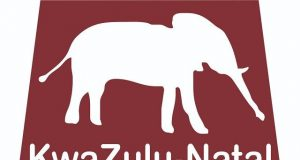 Kwa-Zulu Natal Museum Internship