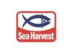 Sea Harvest Is Recruiting Young Aspiring Graduates